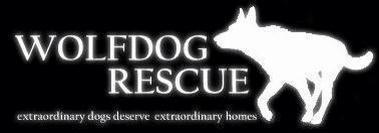 Wolfdog Rescue UK