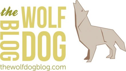 The Wolfdog Blog